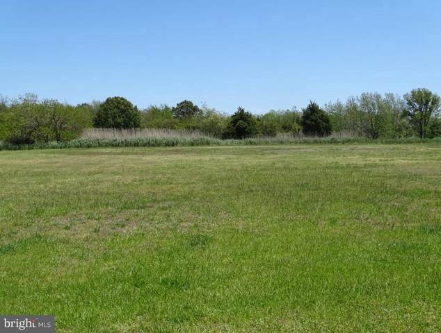 18 Hammock Point, CRISFIELD, MD 21817 (#MDSO2000838) :: The Maryland Group of Long & Foster Real Estate