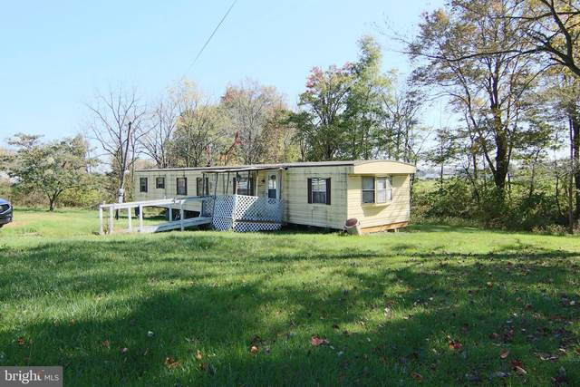 10447 Mountain Road, GRANTVILLE, PA 17028 (#PALN2002012) :: The Casner Group