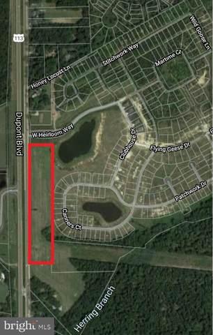 1175 S Dupont Boulevard, MILFORD, DE 19963 (#DESU2008008) :: The Lisa Mathena Group