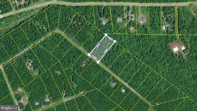 0 Black Walnut Lane, JIM THORPE, PA 18229 (#PACC2000458) :: Linda Dale Real Estate Experts