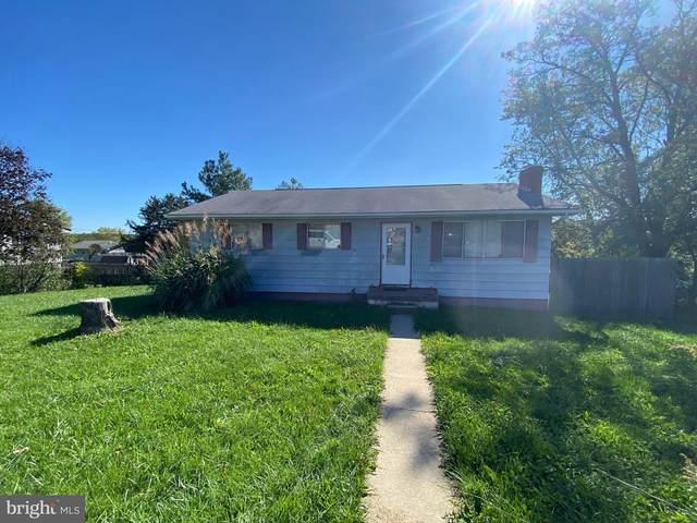 138 Tulip Drive, KEYSER, WV 26726 (#WVMI2000316) :: Eng Garcia Properties, LLC