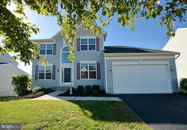 35515 Saint James Drive, ROUND HILL, VA 20141 (#VALO2010400) :: Great Falls Great Homes