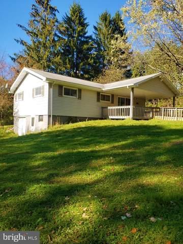 128 Swantamont Road, SWANTON, MD 21561 (#MDGA2001220) :: Dart Homes