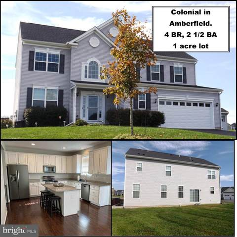 415 Dorchester Drive, FALLING WATERS, WV 25419 (#WVBE2003344) :: Eng Garcia Properties, LLC
