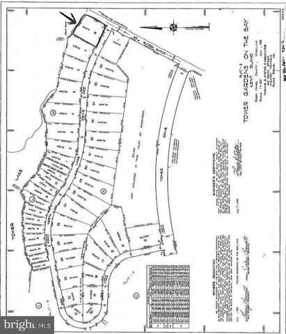 North Lake Drive, STEVENSVILLE, MD 21666 (MLS #MDQA2001314) :: Maryland Shore Living | Benson & Mangold Real Estate