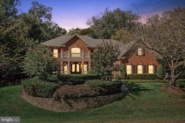 116 Chimney Ridge Place, STERLING, VA 20165 (#VALO2010480) :: Great Falls Great Homes