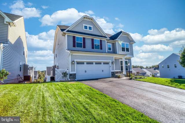 25 Clear Spring Lane, FREDERICKSBURG, VA 22405 (#VAST2004404) :: Great Falls Great Homes