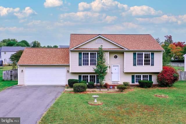 10103 Heriot Row Court, FREDERICKSBURG, VA 22408 (#VASP2003580) :: Great Falls Great Homes