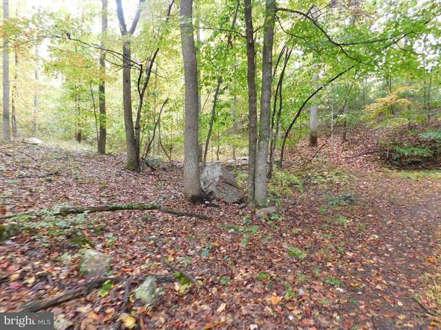 Lot 23 Ron's Drive, AUGUSTA, WV 26704 (#WVHS2000700) :: Dart Homes