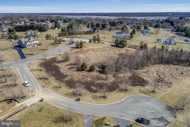 92 Clearfield Court, ELKTON, MD 21921 (#MDCC2002016) :: City Smart Living