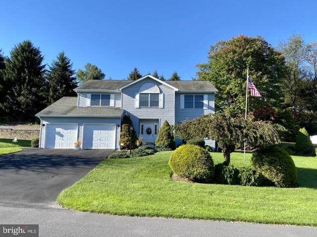 515 Parkmeadow Drive, POTTSVILLE, PA 17901 (#PASK2001866) :: TeamPete Realty Services, Inc
