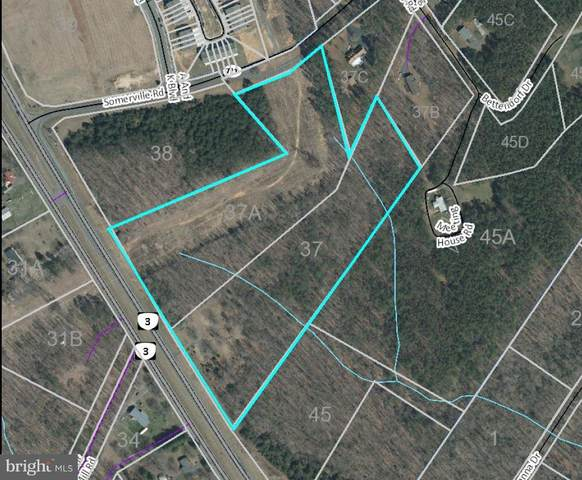 3125 Germanna Highway, LOCUST GROVE, VA 22508 (#VAOR2001002) :: The Miller Team