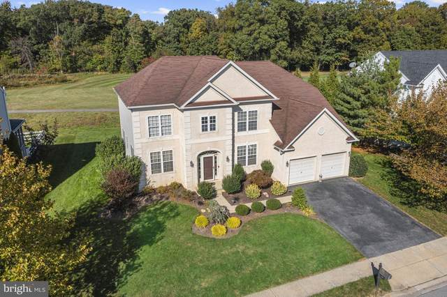 19 Palmer Drive, MIDDLETOWN, DE 19709 (#DENC2009096) :: Your Home Realty
