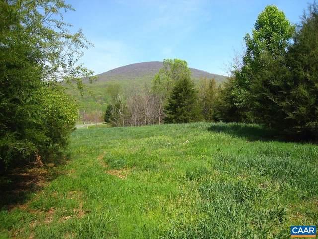 31 Saddle Ridge Ln, NELLYSFORD, VA 22958 (#623505) :: AJ Team Realty