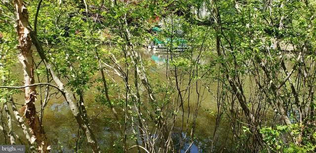103 Larkspur Lane, LOCUST GROVE, VA 22508 (#VAOR2001012) :: Gail Nyman Group