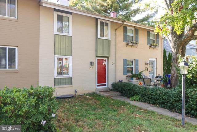 5524 Mystic Court, COLUMBIA, MD 21044 (#MDHW2006222) :: Red Key Group