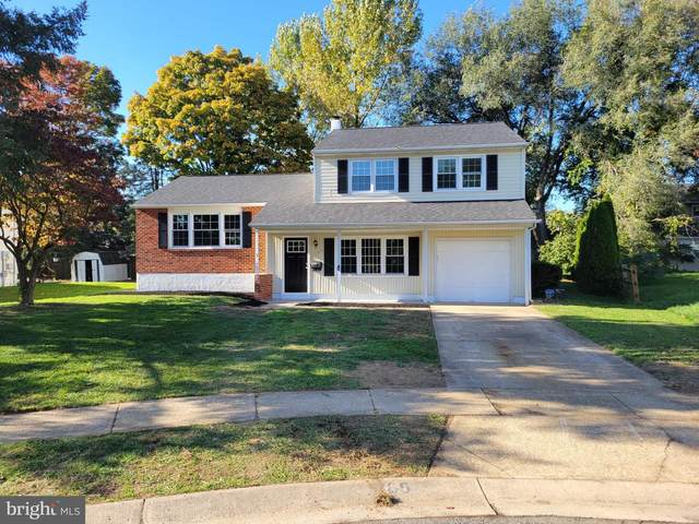 105 Arnell Court, NEW CASTLE, DE 19720 (#DENC2009174) :: The Charles Graef Home Selling Team