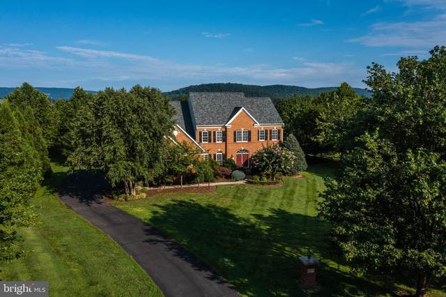 16655 Chestnut Overlook Drive, PURCELLVILLE, VA 20132 (#VALO2010694) :: Great Falls Great Homes