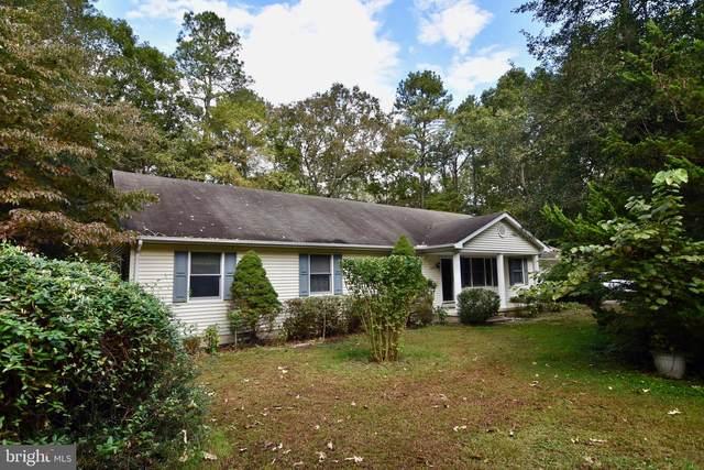 6847 Seneca Drive, SNOW HILL, MD 21863 (#MDWO2003190) :: A Magnolia Home Team