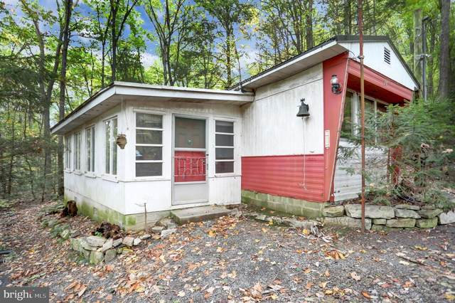 24 Bison Ridge Lane, NEWPORT, PA 17074 (#PAPY2000586) :: Flinchbaugh & Associates