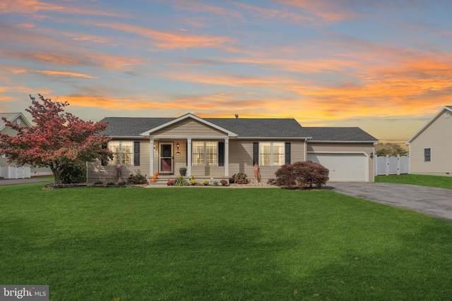 30057 Overbrook Drive, MILTON, DE 19968 (#DESU2008412) :: The Charles Graef Home Selling Team