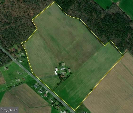 6734 Twin Lanes Farm Road, BRIDGEVILLE, DE 19933 (#DESU2008420) :: McClain-Williamson Realty, LLC.