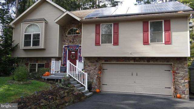121 Maple Boulevard, ORWIGSBURG, PA 17961 (#PASK2001940) :: Tom Toole Sales Group at RE/MAX Main Line