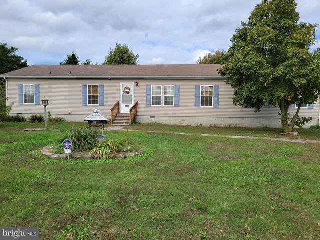 18257 Phillips Hill Road, LAUREL, DE 19956 (#DESU2008450) :: The Charles Graef Home Selling Team