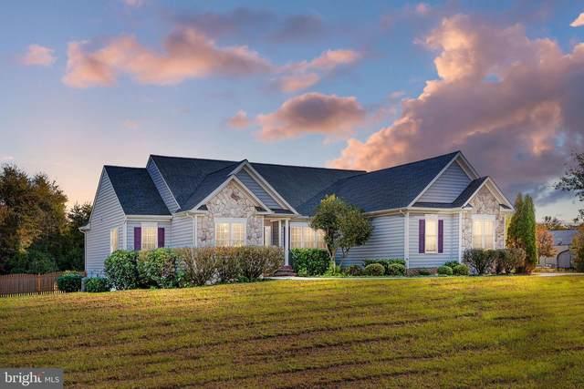 131 Town And Country Drive, FREDERICKSBURG, VA 22405 (#VAST2004586) :: Peter Knapp Realty Group