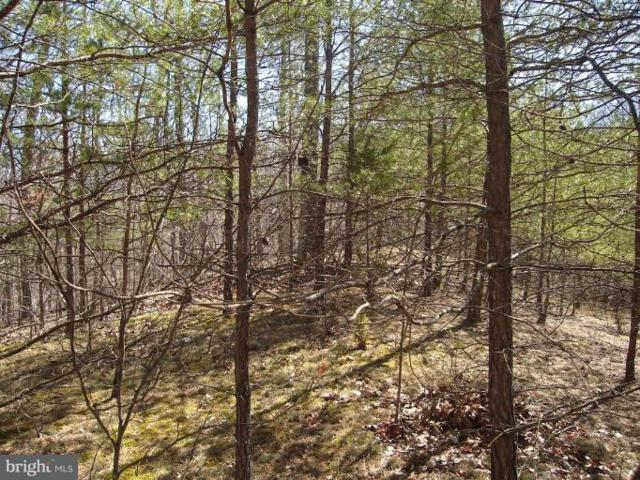 Boy Scout Road, HEDGESVILLE, WV 25427 (#1000088919) :: The Putnam Group