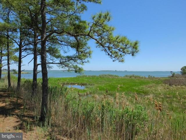 2545 Old House Point Road, FISHING CREEK, MD 21634 (#1000100885) :: The Rhonda Frick Team