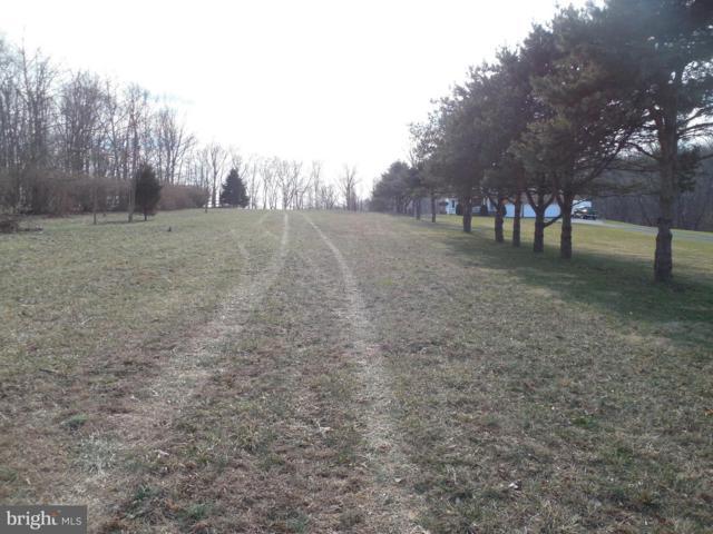 Ragan Road, CONOWINGO, MD 21918 (#1000104743) :: Arlington Realty, Inc.