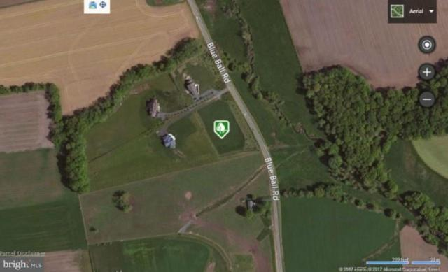 0 Blue Ball Road, ELKTON, MD 21921 (#1000105377) :: ExecuHome Realty