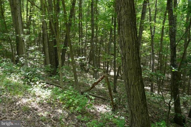 Dale Dr------Lot 21-Section-7B,Block-D, BASYE, VA 22810 (#1000120933) :: Gail Nyman Group