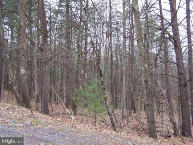 0 Beaver Road, BASYE, VA 22810 (#1000121125) :: The Daniel Register Group