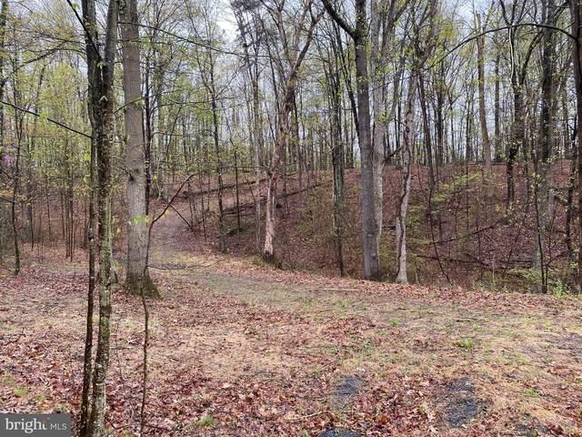 Little Creek Trail, BERKELEY SPRINGS, WV 25411 (#1000167743) :: AJ Team Realty