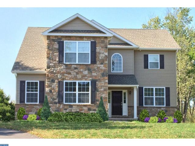 1890 Stony Garden Road, KINTNERSVILLE, PA 18930 (#1000248105) :: ExecuHome Realty