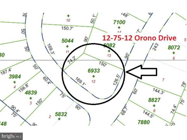12-75 Orono Drive, POCONO LAKE, PA 18347 (#1000270057) :: Blackwell Real Estate