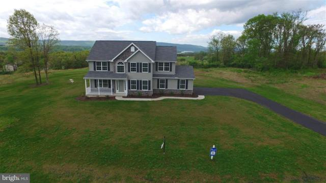 55 Pinetree Drive, DUNCANNON, PA 17020 (#1000782591) :: The Heather Neidlinger Team With Berkshire Hathaway HomeServices Homesale Realty