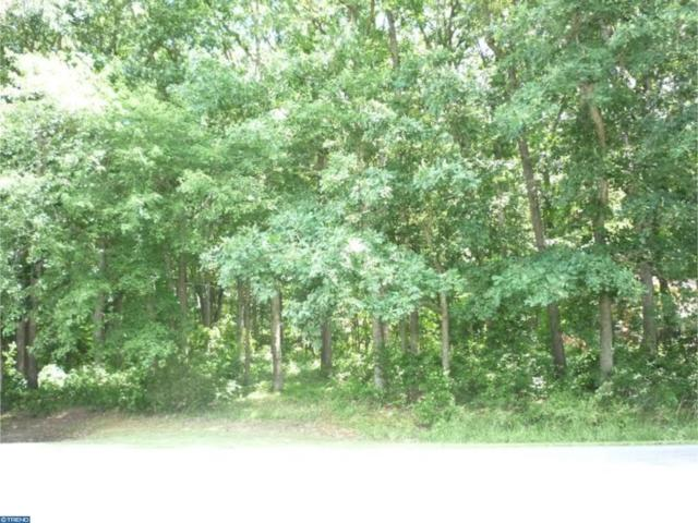 Lot 5 Big Ditch Road, WYOMING, DE 19934 (#1001216285) :: Brandon Brittingham's Team