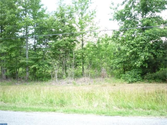 Lot 1 Oak Point School Road, WYOMING, DE 19934 (#1001216345) :: Brandon Brittingham's Team