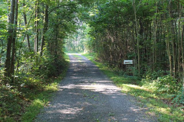 311 White Deer Drive, BREEZEWOOD, PA 15533 (#1001751151) :: The Licata Group/Keller Williams Realty