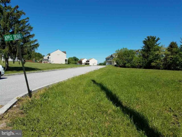 Lot 1 Apple Orchard Court, YORK HAVEN, PA 17370 (#1002670231) :: The Heather Neidlinger Team With Berkshire Hathaway HomeServices Homesale Realty