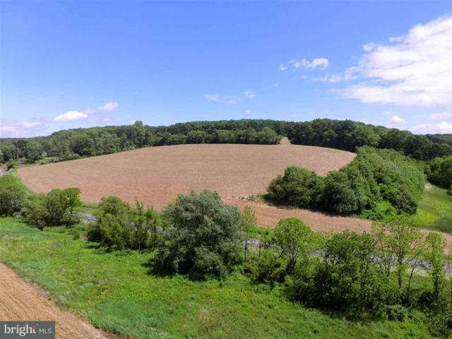 Lot 19 Stein Hill Estates, YORK, PA 17403 (#1002671173) :: The Joy Daniels Real Estate Group
