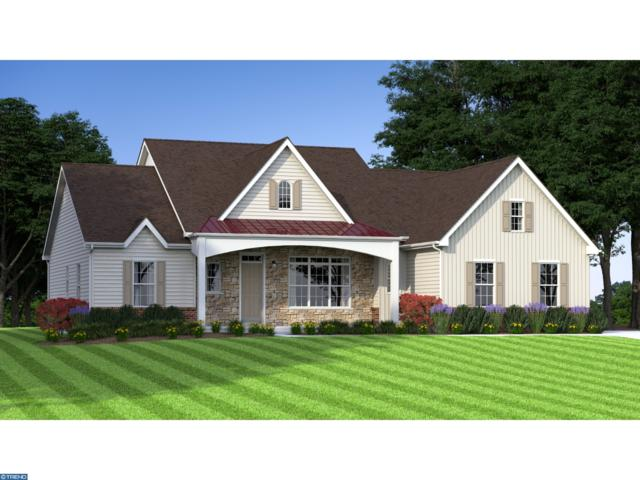 12 Ravenglass Drive, TOWNSEND, DE 19734 (#1004113569) :: Colgan Real Estate