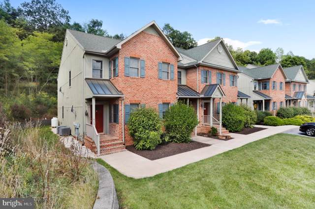 14101 Barberry Court #401, MERCERSBURG, PA 17236 (#1004183371) :: Homes to Heart Group