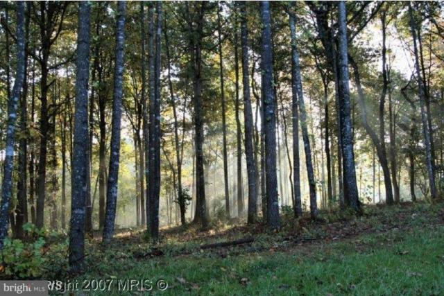 Lot 18 Randolph, CULPEPER, VA 22701 (#1005198591) :: Pearson Smith Realty
