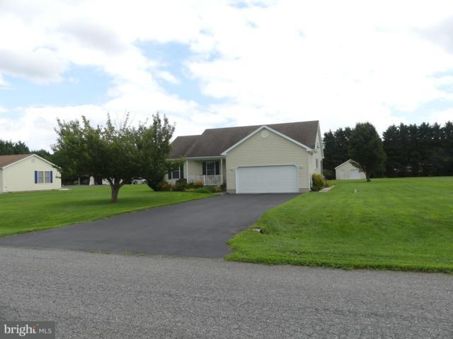 106 Falls Road, MILTON, DE 19968 (#1005934609) :: Barrows and Associates