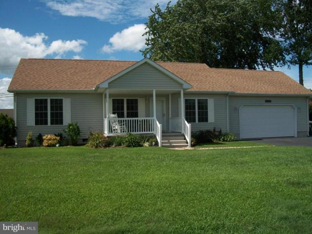 30079 Overbrook Drive, MILTON, DE 19968 (#1005935507) :: The Windrow Group