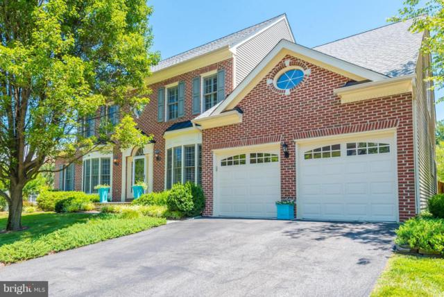 545 Coover Road, ANNAPOLIS, MD 21401 (#1005948401) :: Colgan Real Estate